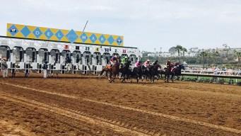 Mueren dos caballos de carreras en hipódromo de Del Mar