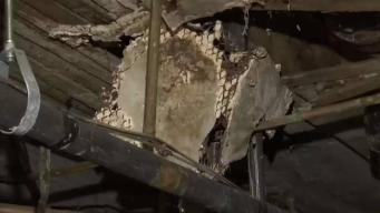 Denuncian condiciones deplorables de edificio en Hartford