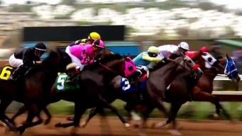 Dos caballos muertos en el hipódromo de Del Mar