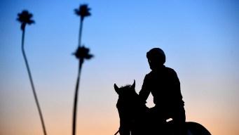 Muere segundo caballo en dos días en Santa Anita