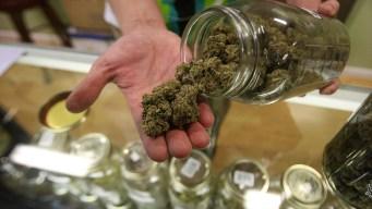 NJ ampliaría marihuana medicinal, eliminación de historiales