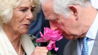 Histórica visita del príncipe Carlos a Cuba
