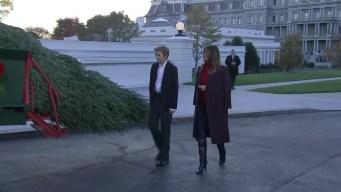 Casa Blanca árbol de navidad Melania Trump