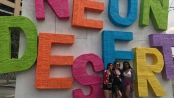 El popular festival Neon Desert tendrá nueva ubicación
