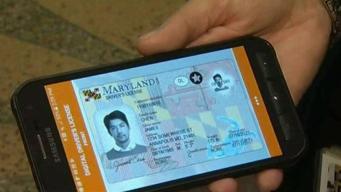 REAL ID: Extienden fecha límite para someter documentos