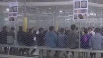 2 niños inmigrantes serán reunidos con sus padres