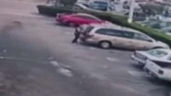 Revelan imágenes del atropello mortal a madre cubana