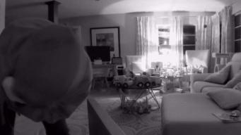 Familia huye de huracán y ladrones hacen fiesta