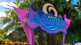 Aquatica es acreditado para visitantes con autismo