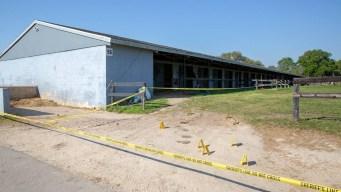 Hallan el cuerpo de un hombre dentro de un establo en Ocala