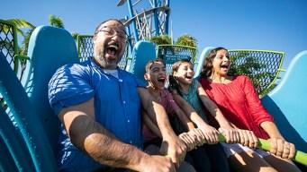 SeaWorld y Busch Gardens ofrecen entrada gratis a veteranos