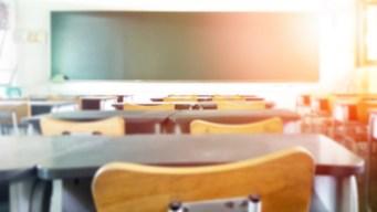 Escuelas de la Bahía de Tampa necesitan maestros