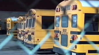 Nueva ley exige cinturones de 3 puntos en buses escolares