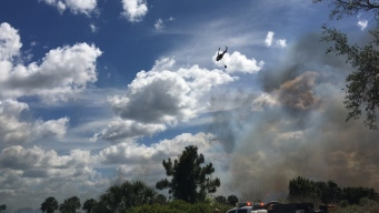 Incendio forestal arrasa con cientos de hectáreas