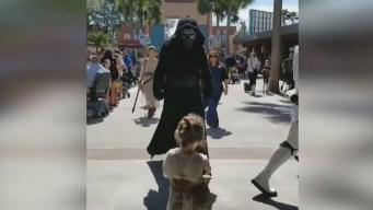 Tierno video: niña batalla con el lado oscuro en Disney