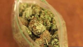 Escondido se blinda contra la legalización de la marihuana