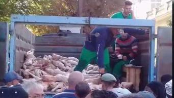 Sin higiene venta de cerdo en Cuba