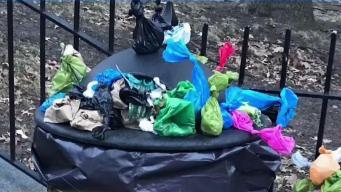 Voluntarios ayudan a limpiar parque abarrotado de basura