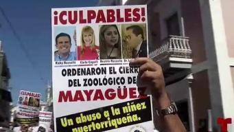 Exigen la reapertura del Zoológico de Mayagüez
