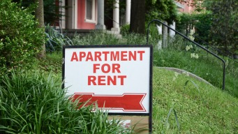 Albany inclina la balanza a favor de inquilinos
