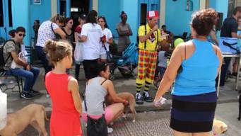 Cubanos en defensa de los animales en La Habana