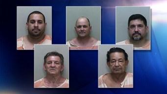 Acusan a hispanos tras presuntas peleas de gallos
