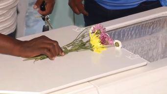 Cinco feminicidios en RD en una semana