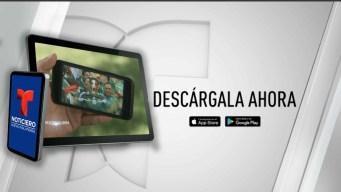 Cómo ver los partidos en la App de Telemundo Nueva Inglaterra