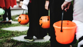 Consideran mover celebración de Halloween en Worcester