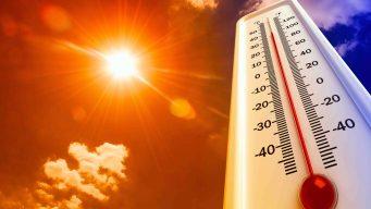 Advertencia de calor excesivo para toda el área triestatal