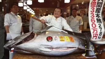 Insólito: subastan un gigantesco atún por $3 millones