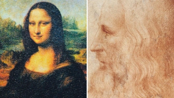 El misterioso mechón de pelos de Leonardo da Vinci