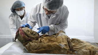 La momia que guardaría el secreto de una enfermedad
