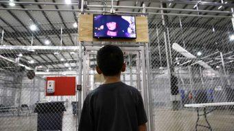 """Llevan ante la OEA caso de niños """"desaparecidos"""""""