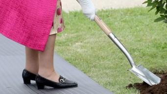 Sorpresa real: la Reina Isabel II agarra la pala