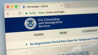 Herramienta de USCIS para facilitar trámites migratorios