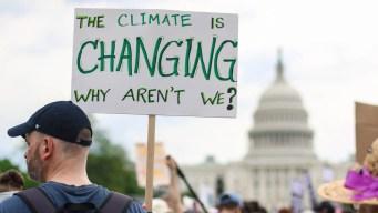 Informe desalentador de la ONU sobre futuro del planeta