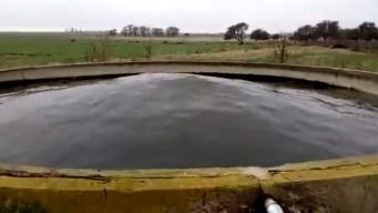 Viral: la misteriosa ondulación del agua en un tanque