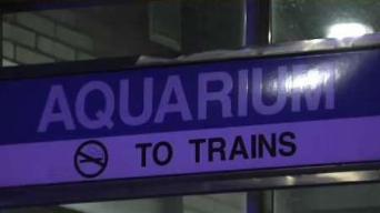 Se reanuda servicio tras disparos en estación del Aquarium