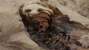 Perú: sacrificios masivos de niños eran un ritual habitual
