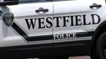 Policía: Detenido hombre armado en escuela de NJ
