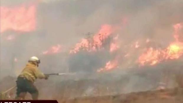 [TLMD - SD] Bomberos de Tecate combaten masivo incendio