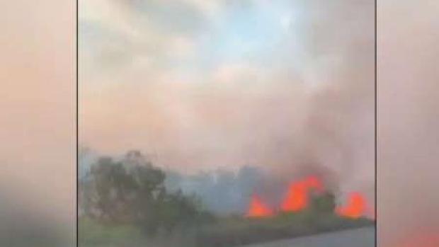 [TLMD - LV] Brasil decreta estado de emergencia por incendios
