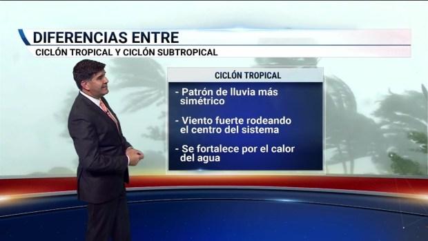 [TLMD - MIA] Diferencias entre ciclón tropical y ciclón subtropical