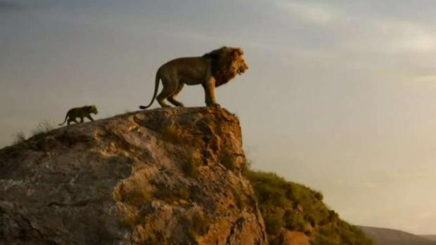 "[TLMD - Tampa] Disney se prepara para estrenar ""The Lion King"""