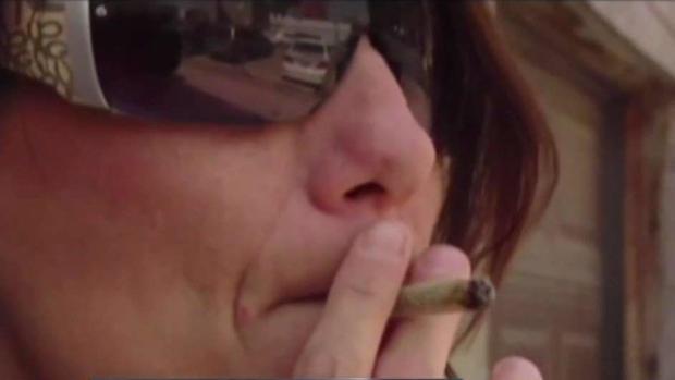 [TLMD - SD] Disputan apertura de dispensario de marihuana