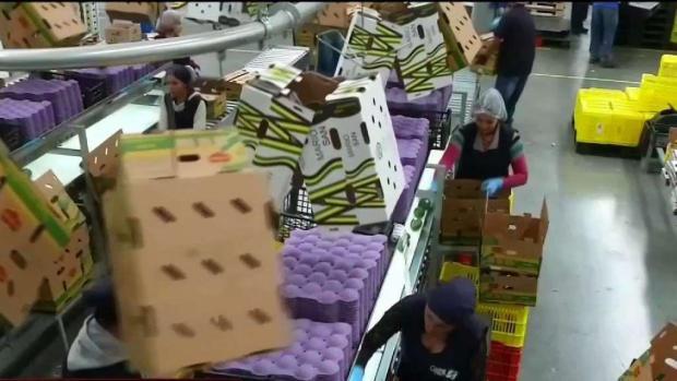 [TLMD - SD] Economistas: Consumidores pagarán por los aranceles