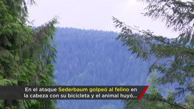 [TLMD - NATL] Muerte tras feroz ataque de puma a ciclistas