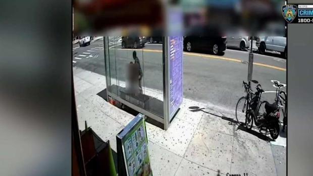 [TLMD - NY] NYPD: mujer le arrebata el bolso a abuela en Sunset Park