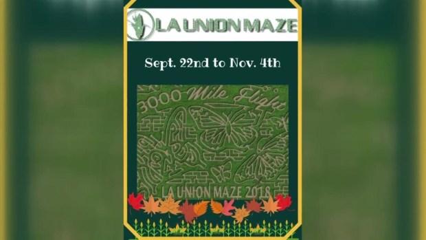 [TLMD - El Paso] La Union Maze: diversión en otoño